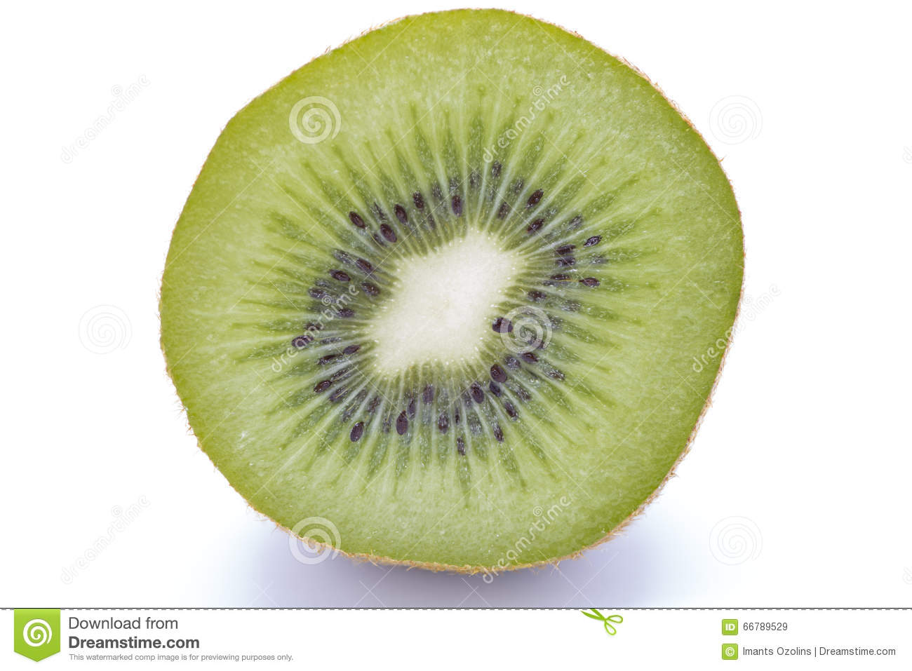 Sliced kiwifruit on white background
