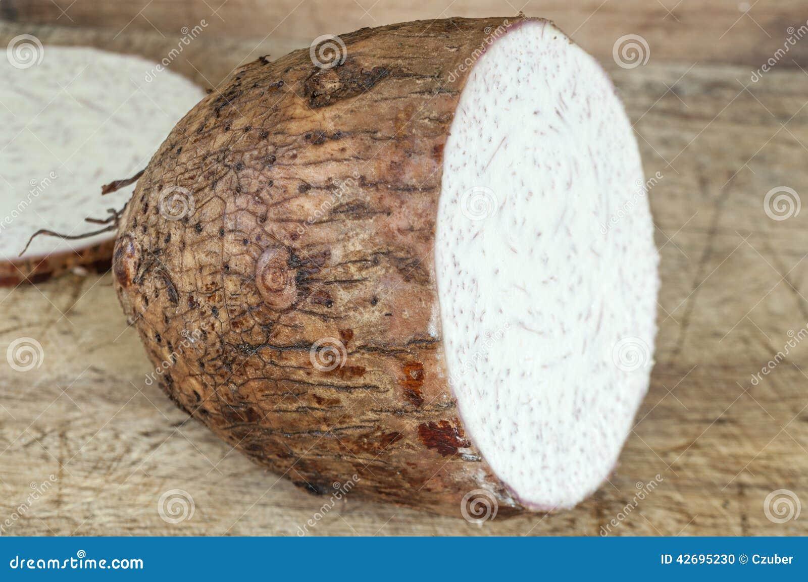 Name Root: Sliced Malanga Root Stock Photo