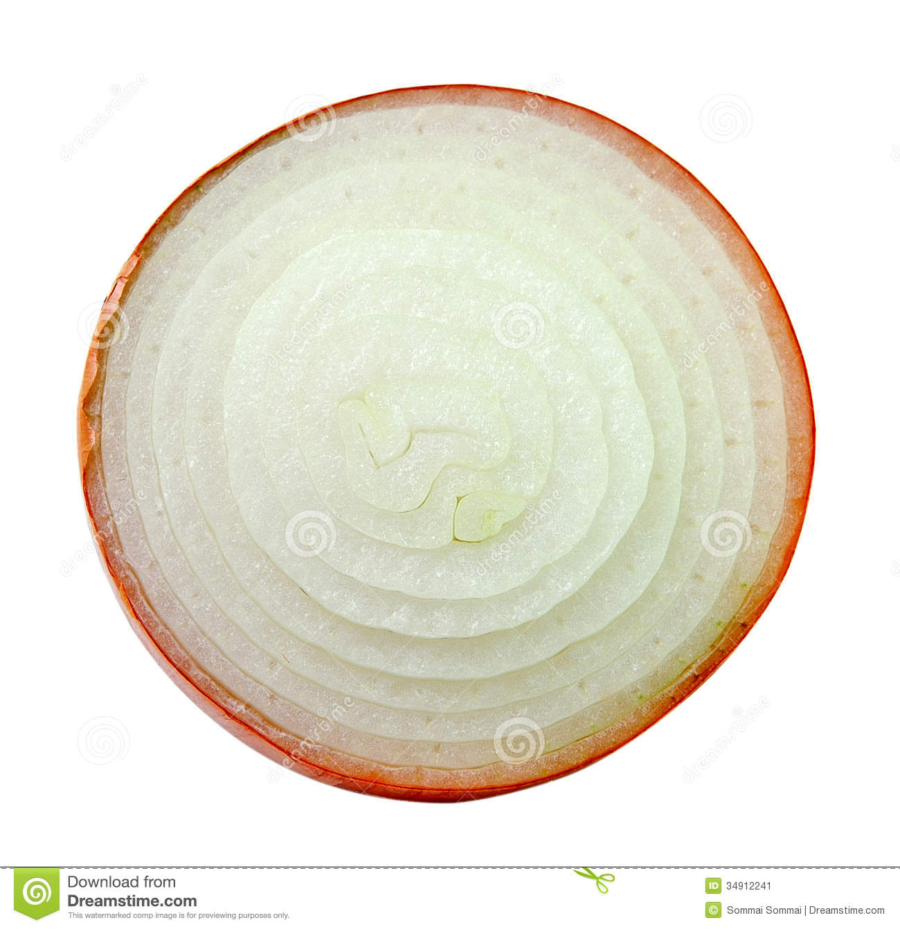 Sliced Onion On White Background Stock Image - Image: 34912241