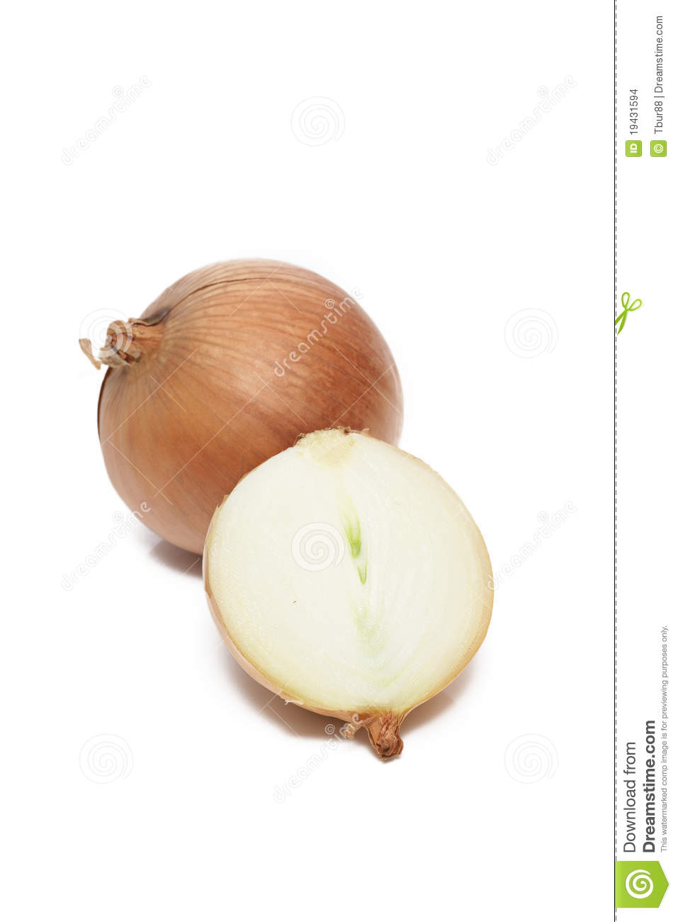 Sliced White Onions Isolated Stock Images - Image: 19431594