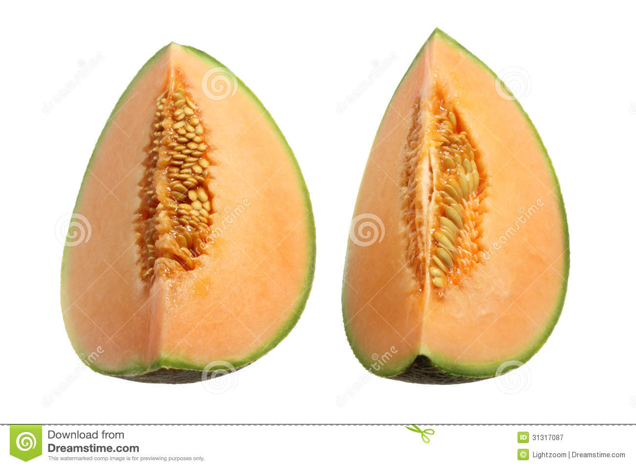 background of rock melon Download the royalty-free photo group of melons and pomelo isolated on white background created by groupcheers at the lowest price on fotoliacom browse our cheap image bank online to find the perfect stock photo for your marketing projects.