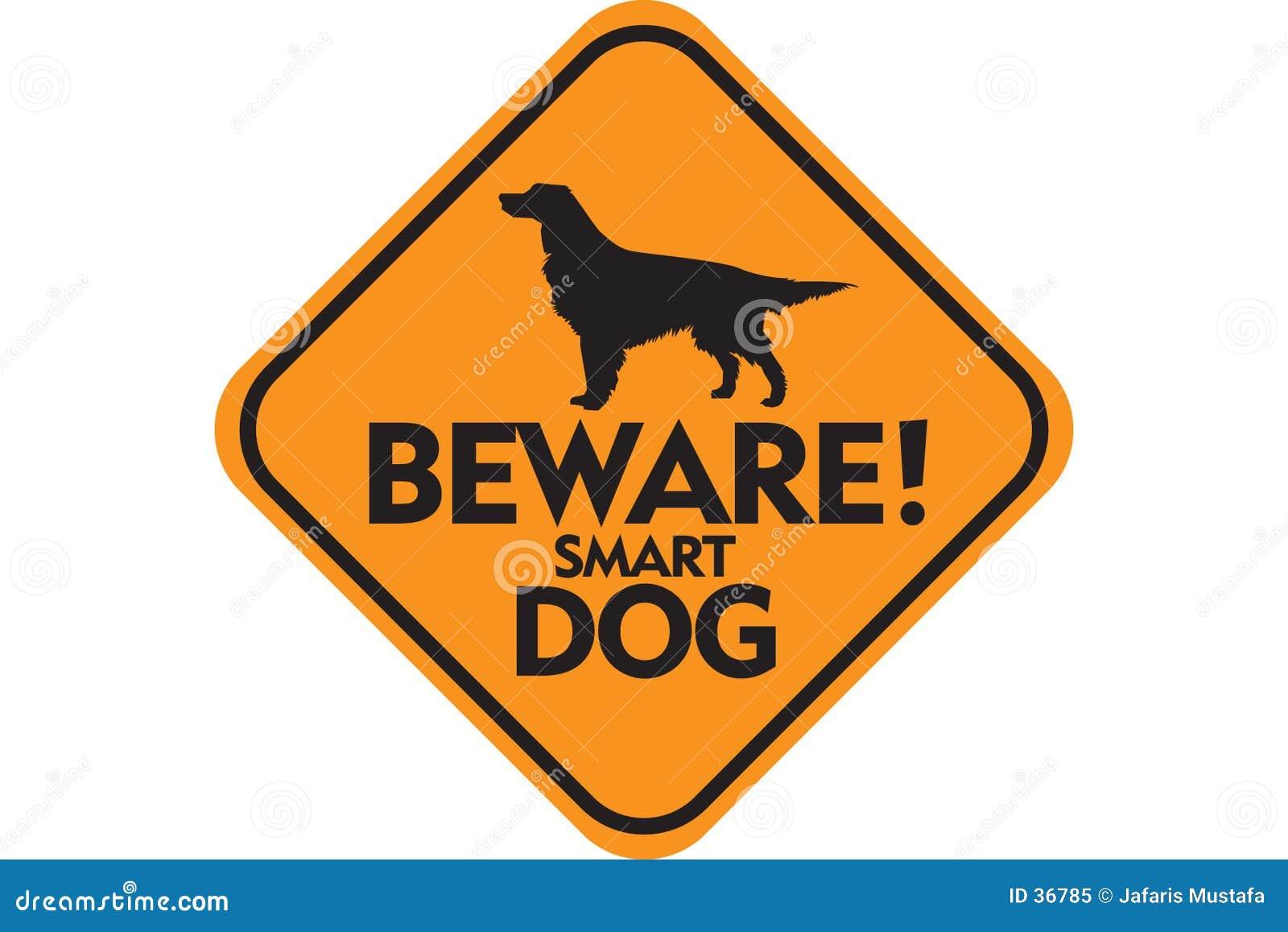 Download Slimme Hond stock illustratie. Illustratie bestaande uit uithangbord - 36785
