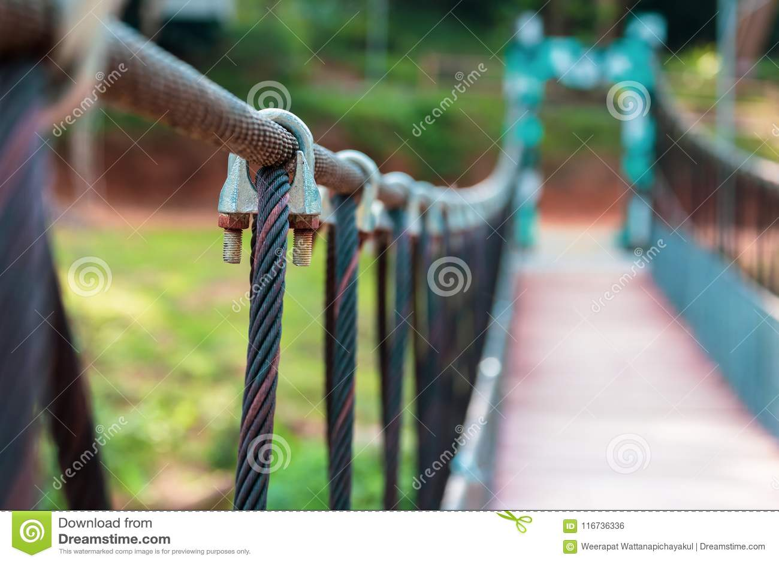 Sling Bridge Clip stock photo. Image of construction - 116736336