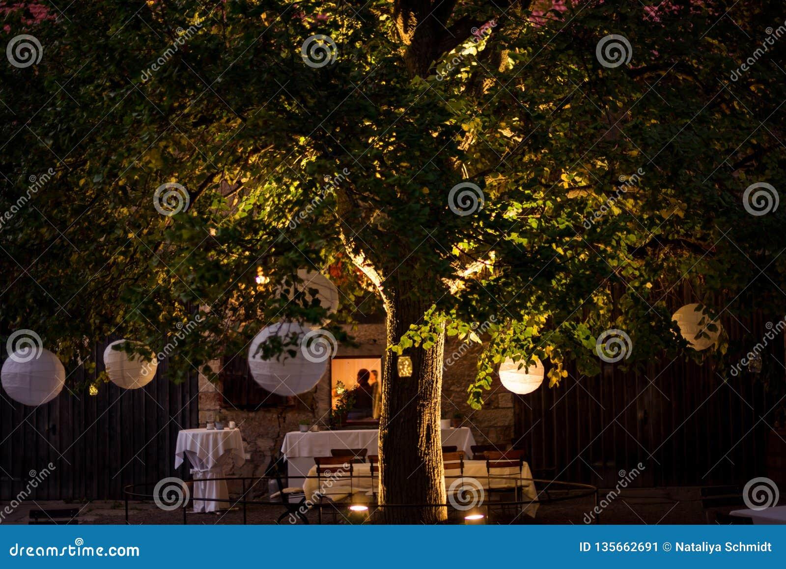 Slingers en decoratie op een grote boom Een partij