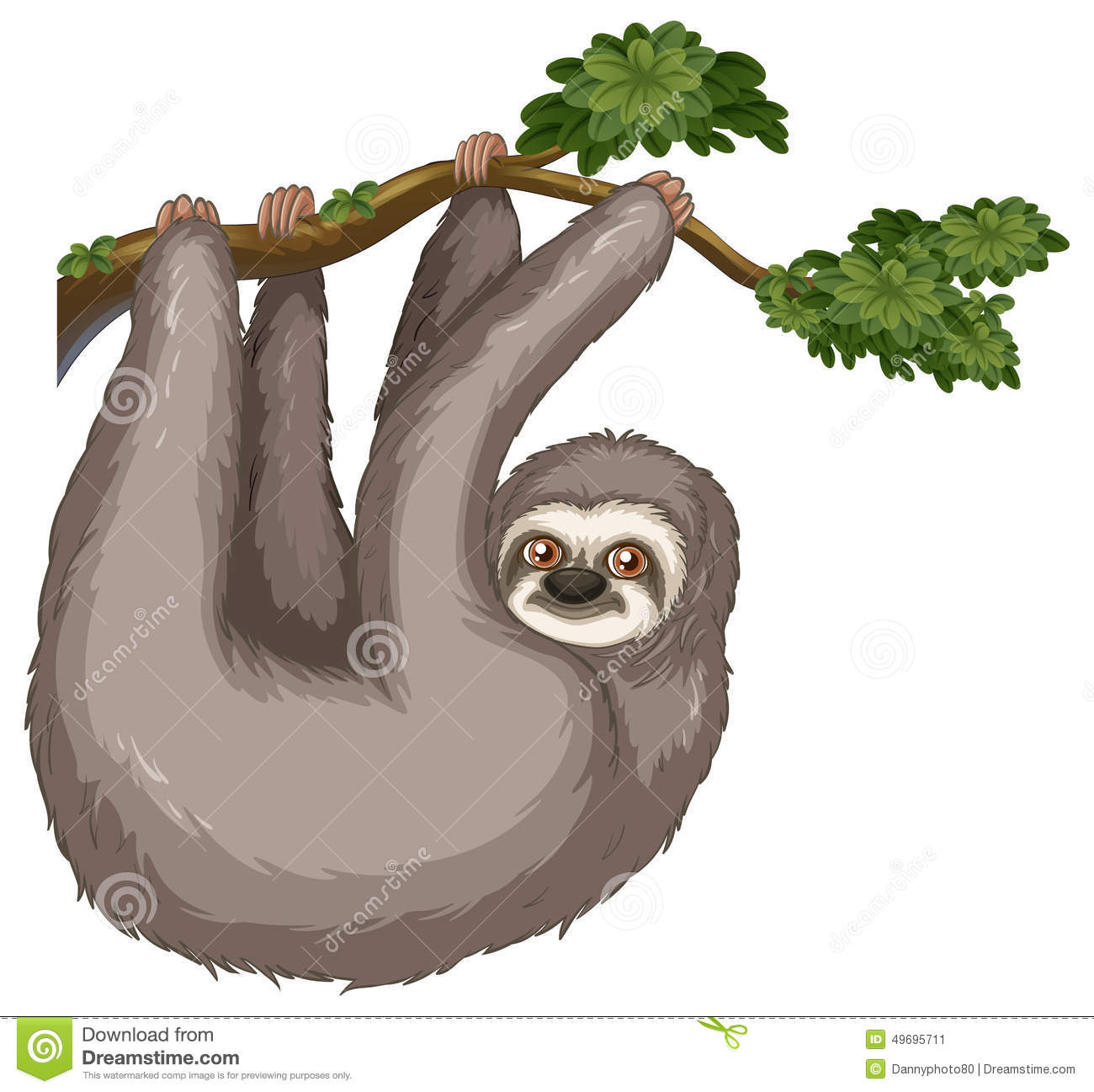 Sloth Stock Vector - Image: 49695711