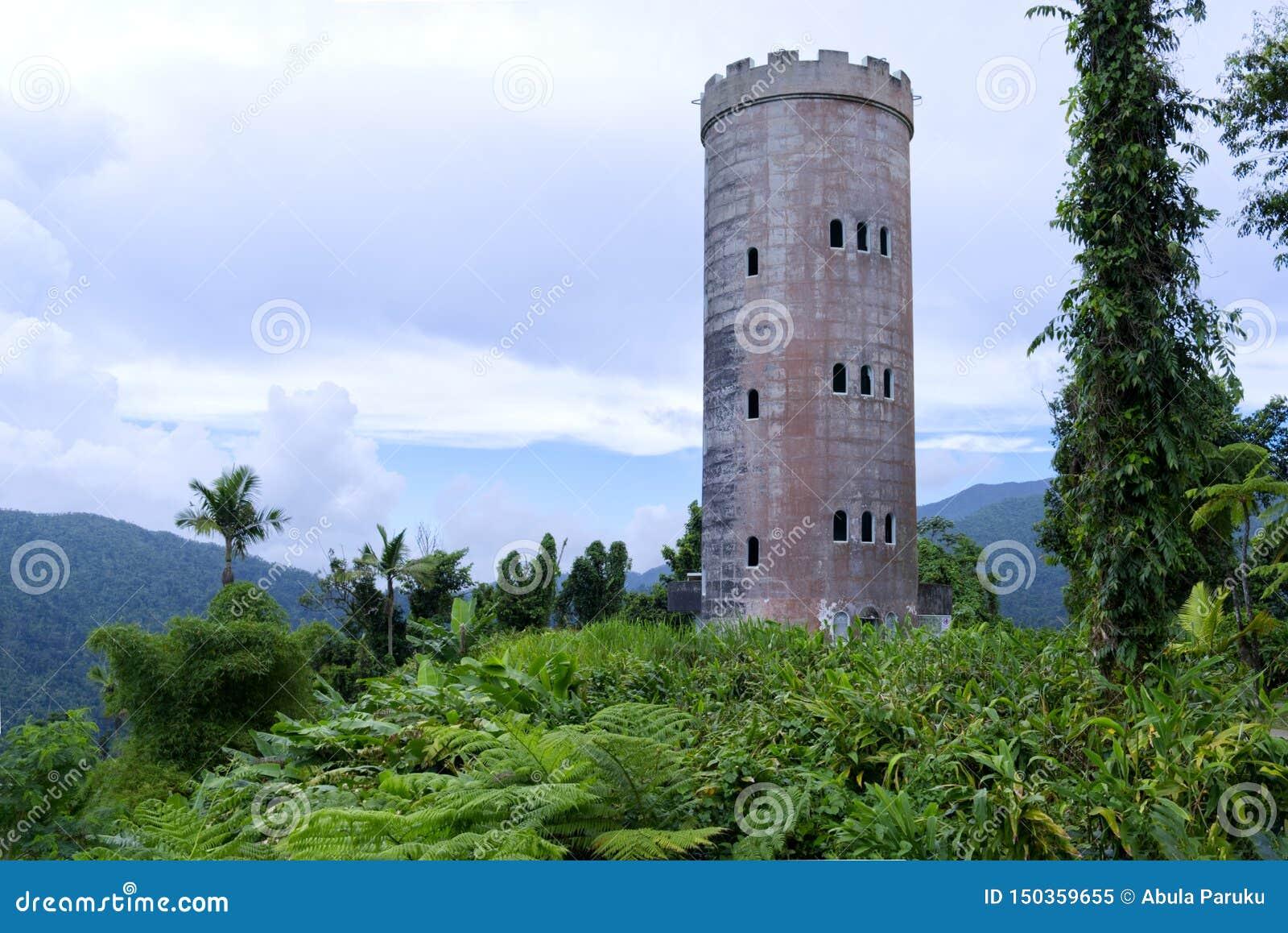 Slott i rainforesten