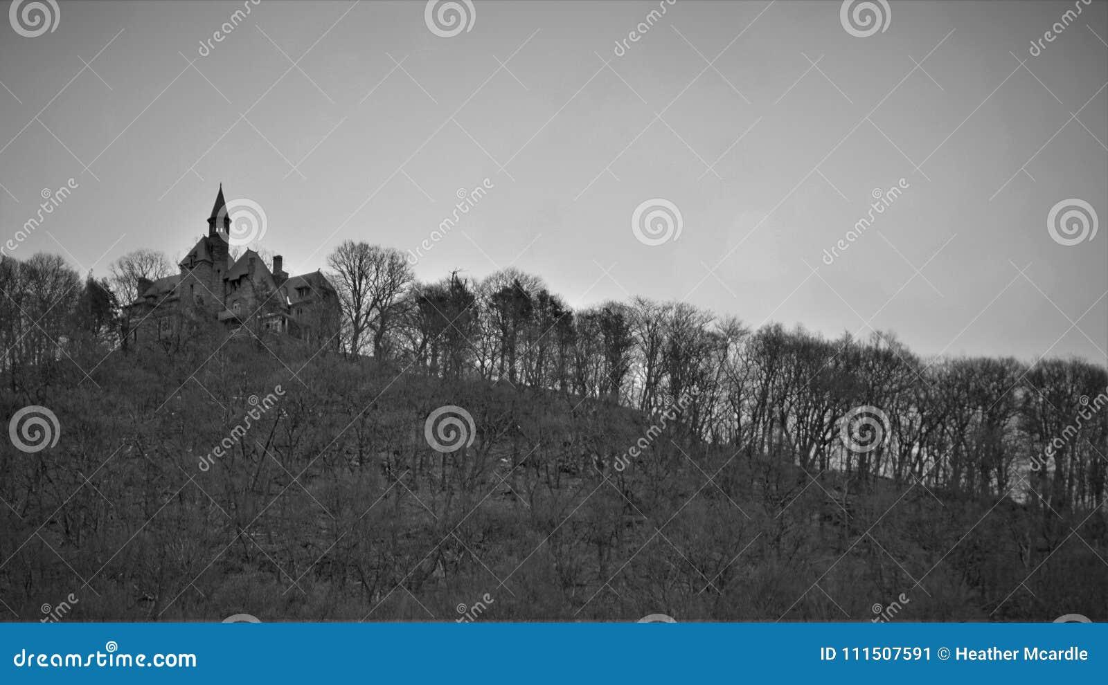 Slotten vaggar sitter kullen som omges av den glesa vinterskogen