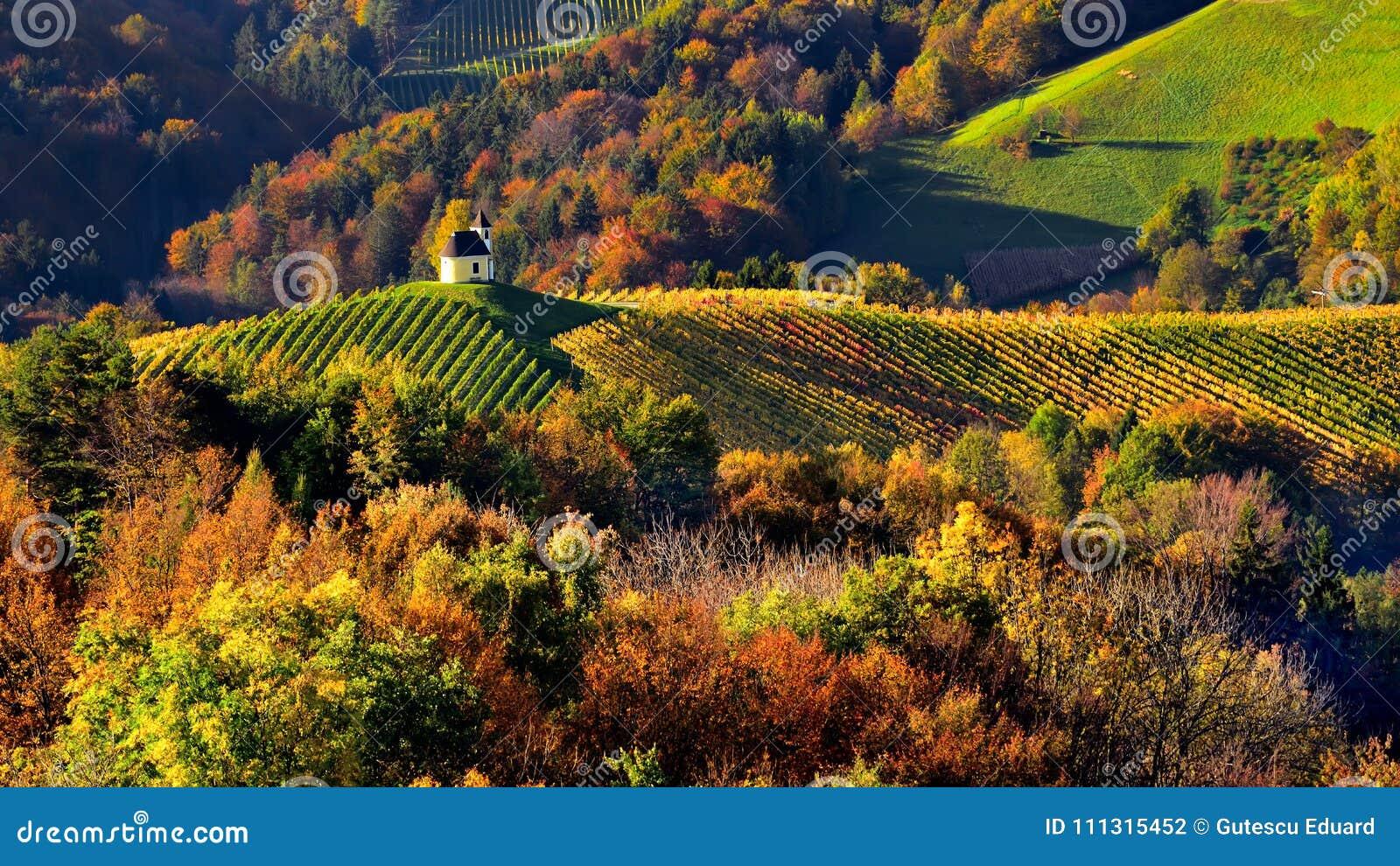 Slovenien landskap, höstplats, natur, berg