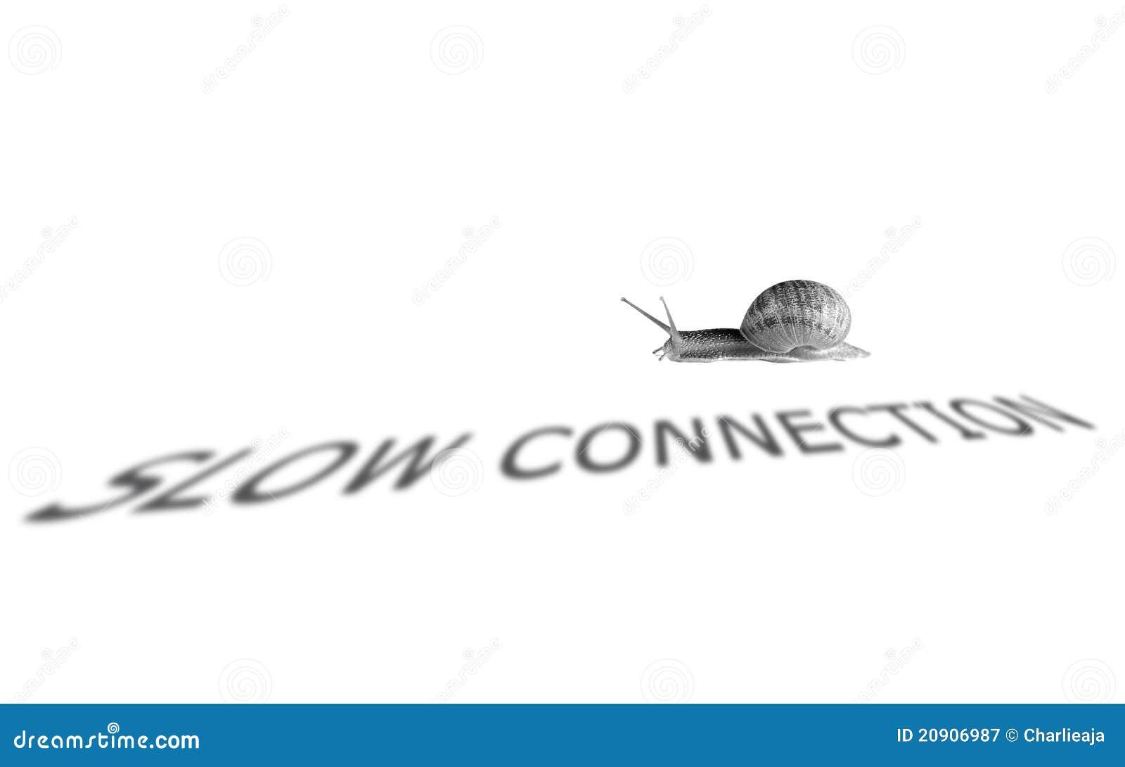 internet connection  internet connection is slow