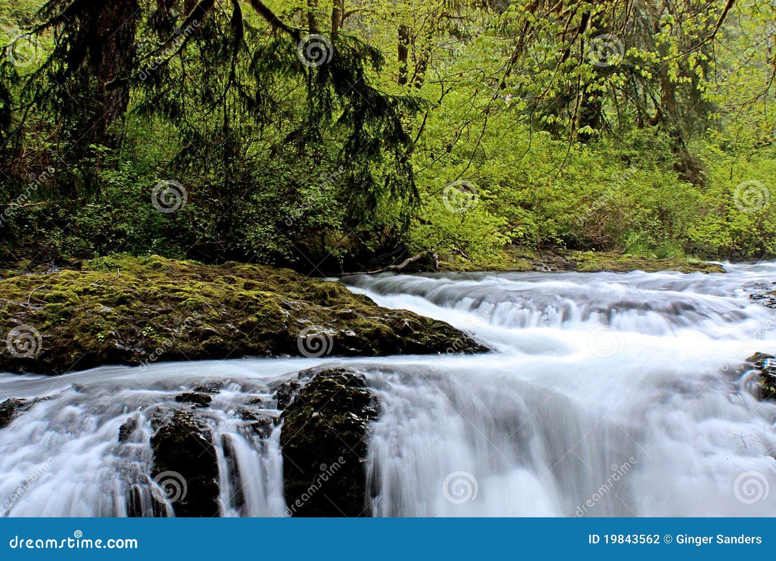 Slow Water Falling Off Rocks In A Green Forest