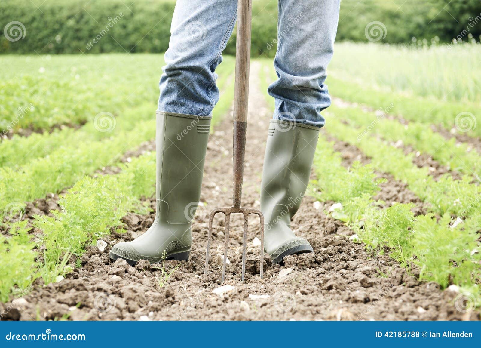 Sluit omhoog van het Landbouwbedrijfgebied van Landbouwersworking in organic