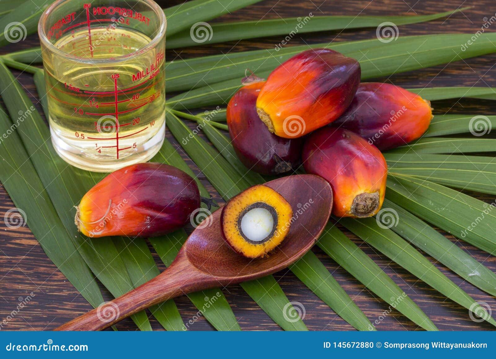 Sluit omhoog van Palmolievruchten met tafelolie en palmblad op een houten achtergrond
