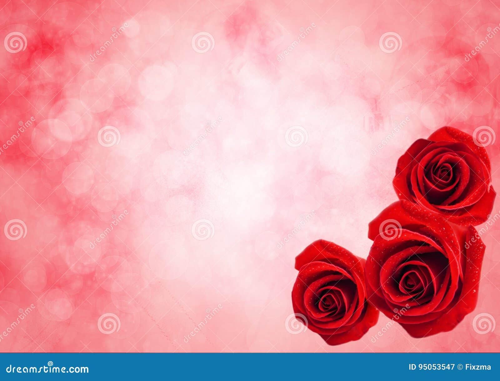 Sluit omhoog van rode roze bloem met bokeh lichte achtergrond