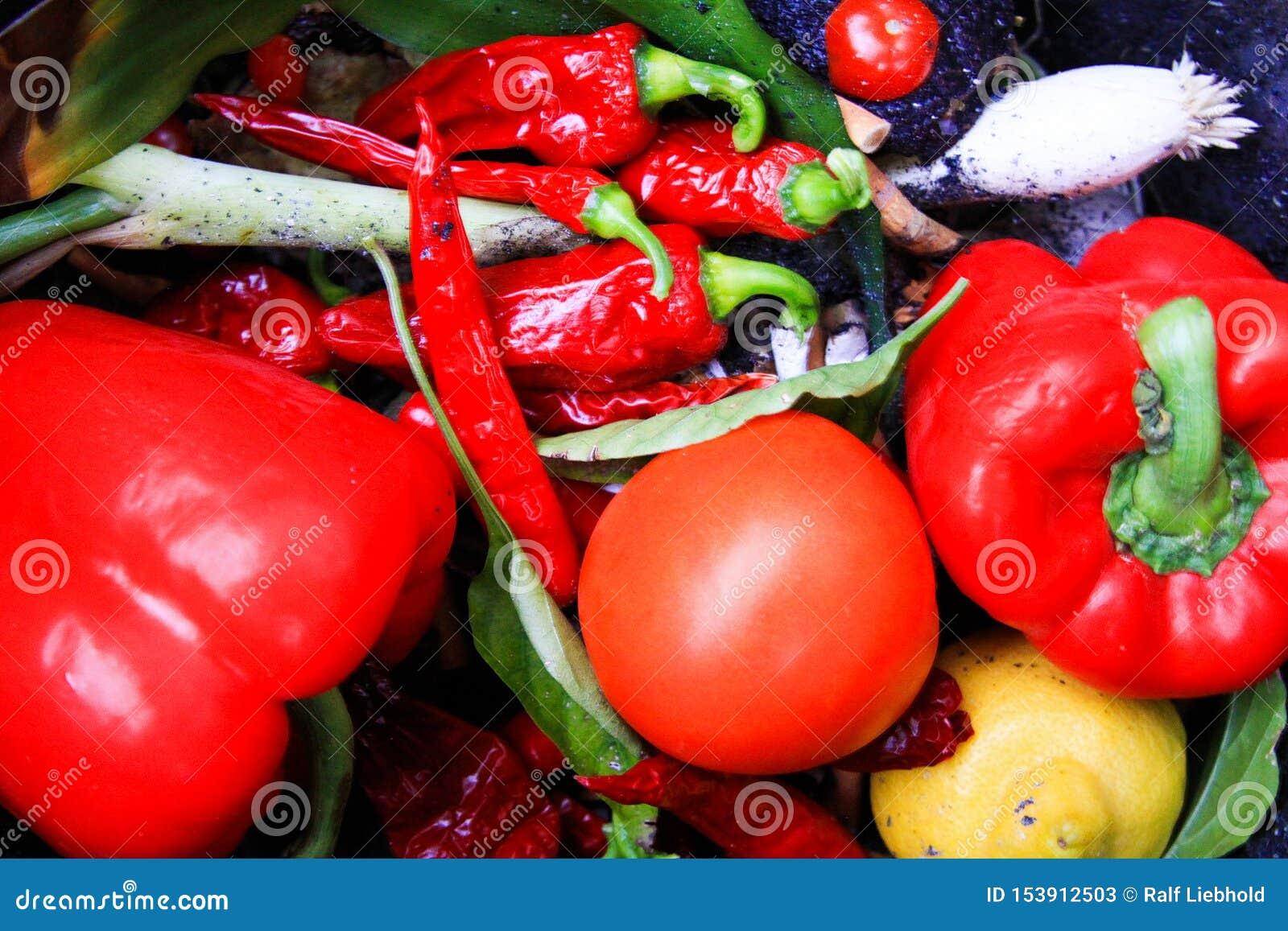 Sluit omhoog van verse rode plantaardige groene paprika, tomaat, chilis in afvalbak