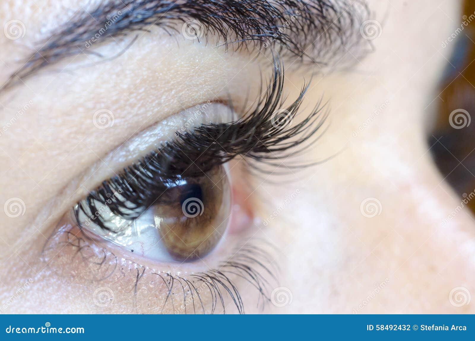 Sluit omhoog van vrouwelijk bruin oog zonder omhoog maken, lange zwepen en ey