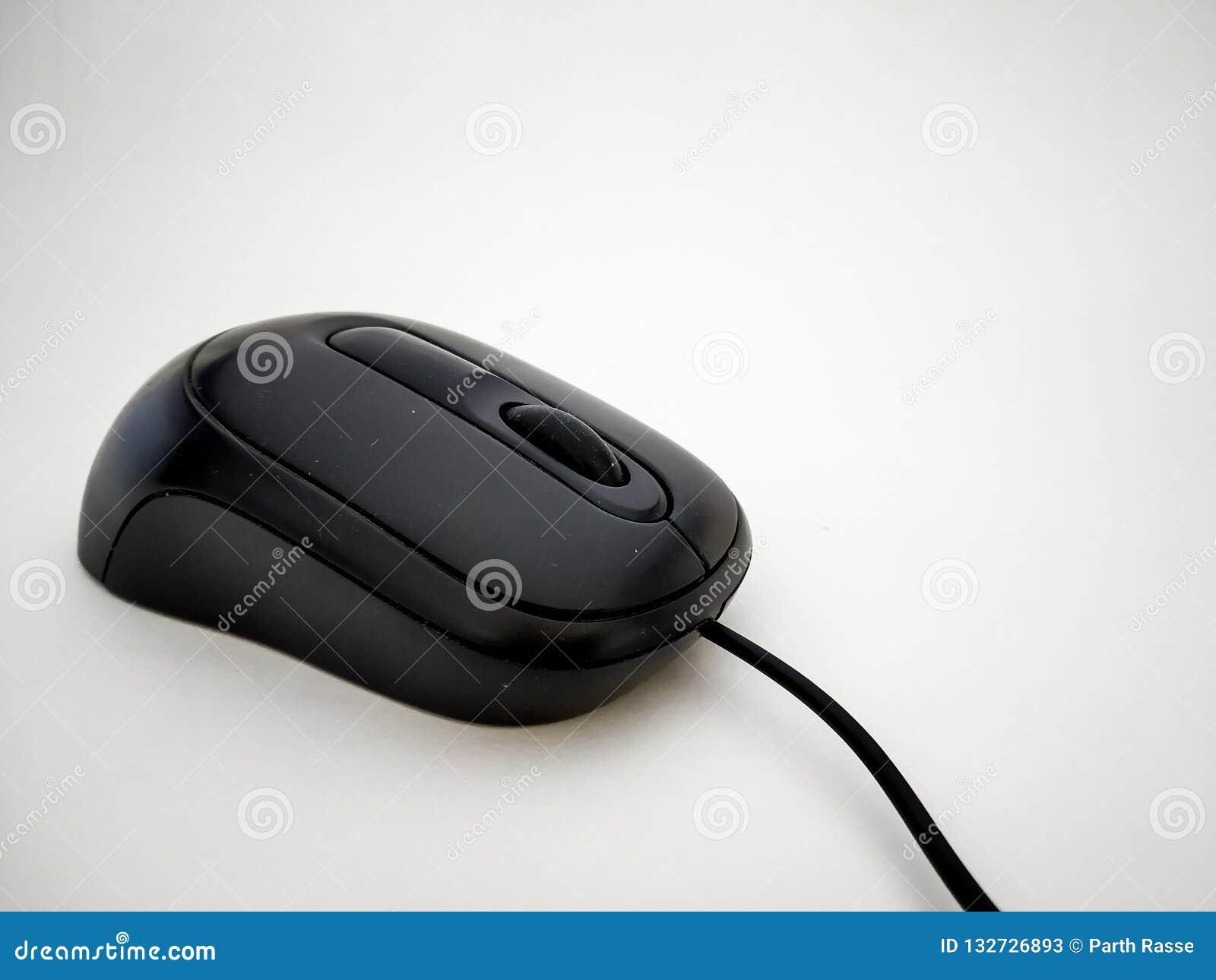 Sluit omhoog van zwarte getelegrafeerde muis