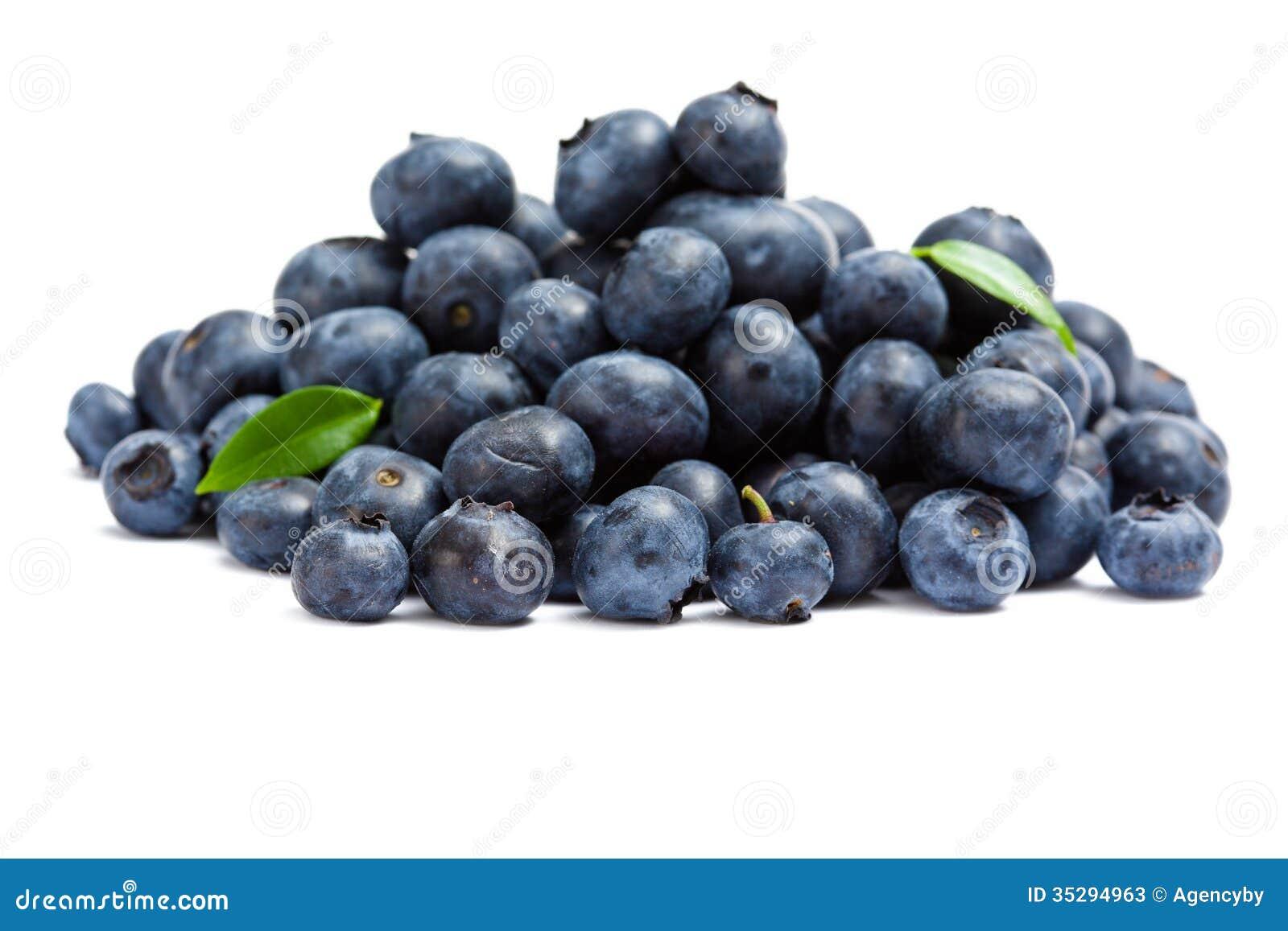 Slut upp av högen av blåbäret