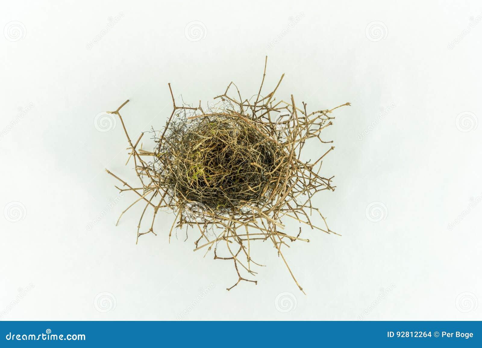 Slut upp av små tomma birdÂs rede som isoleras på vit