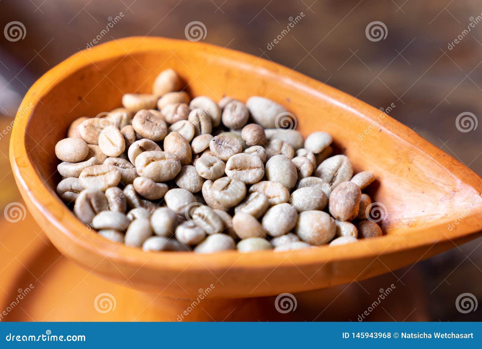 Slut upp den rå gröna kaffebönan för selektiv fokus i krukmakerikopp