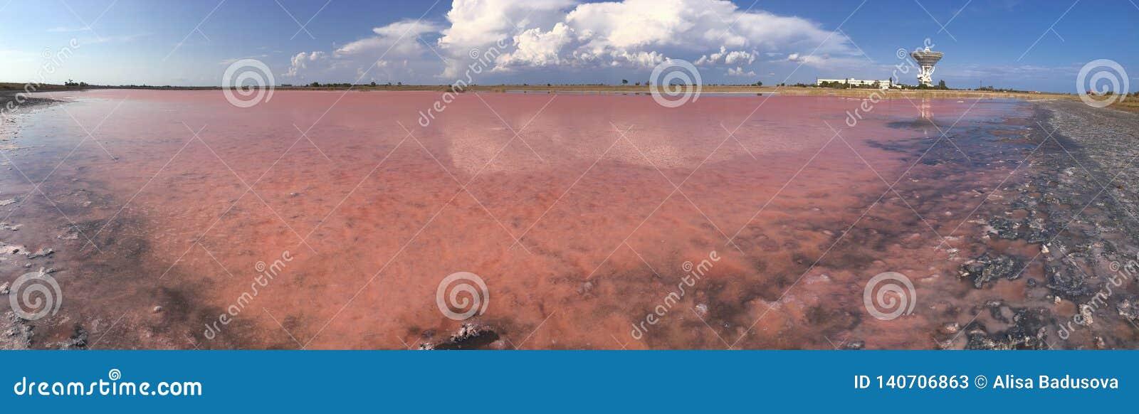 Slutet upp Himalayan rosa färger saltar kristallen i naturlig bakgrund