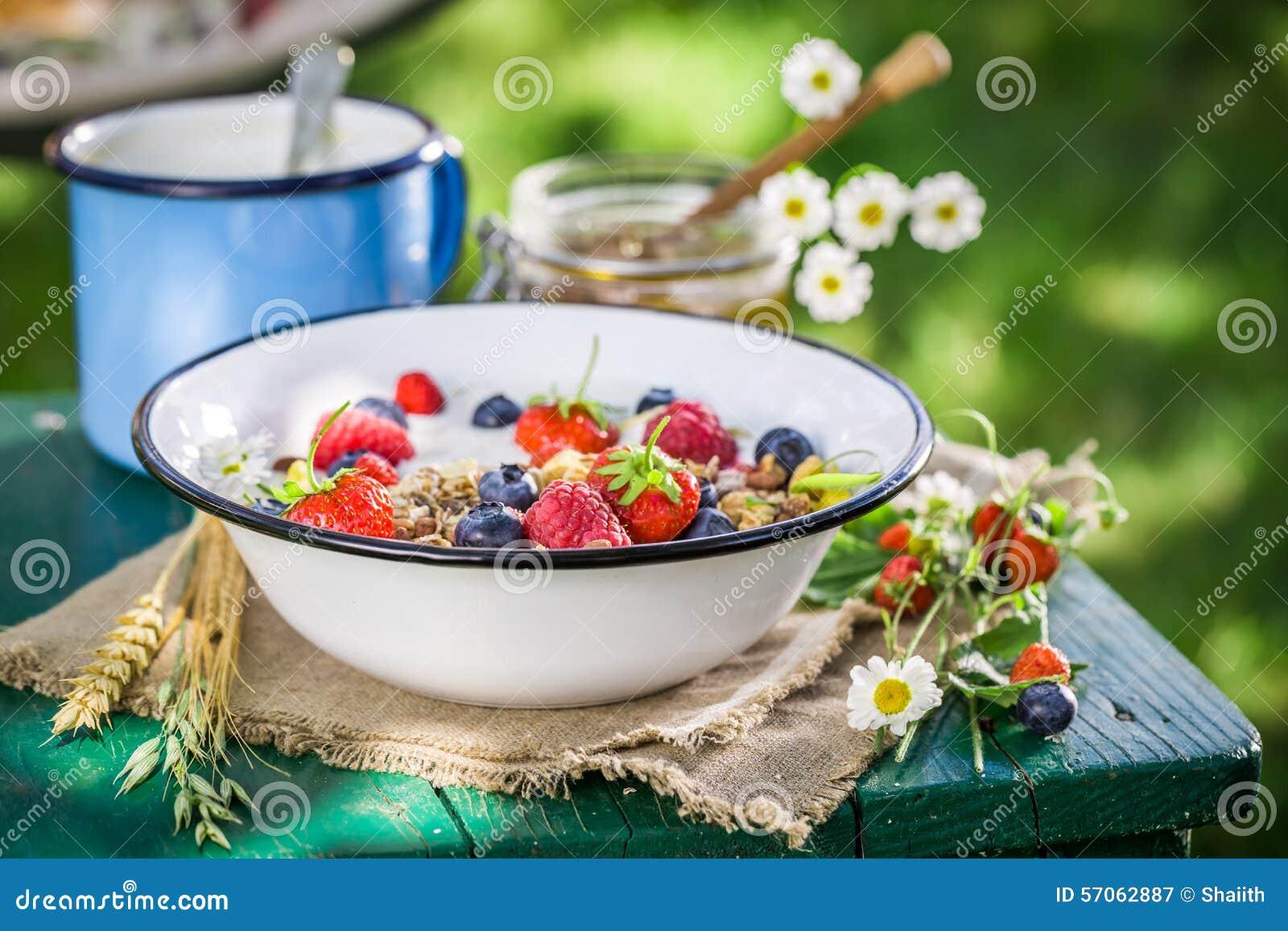 Smakelijk ontbijt met bessen en yoghurt in tuin