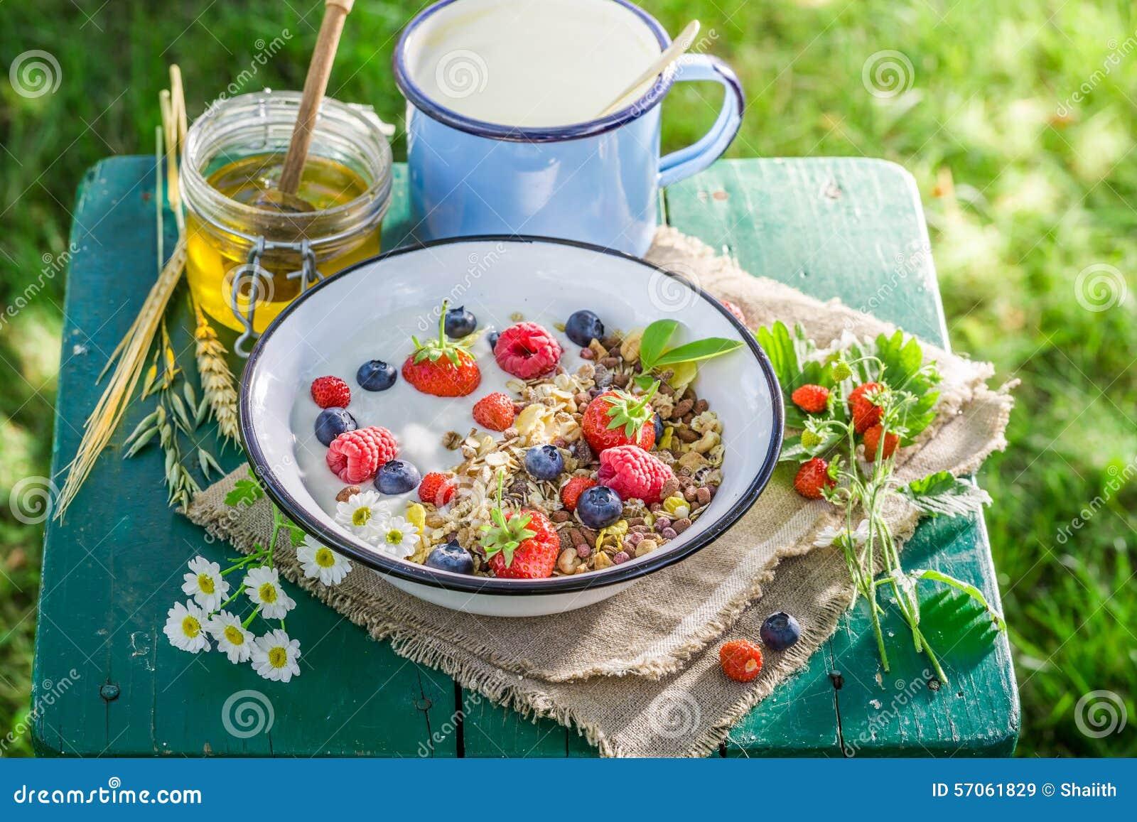 Smakelijk ontbijt met yoghurt en bessen