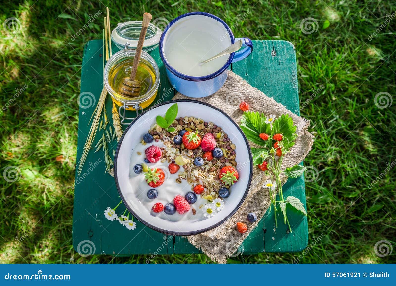 Smakelijke muesli met yoghurt en bessen