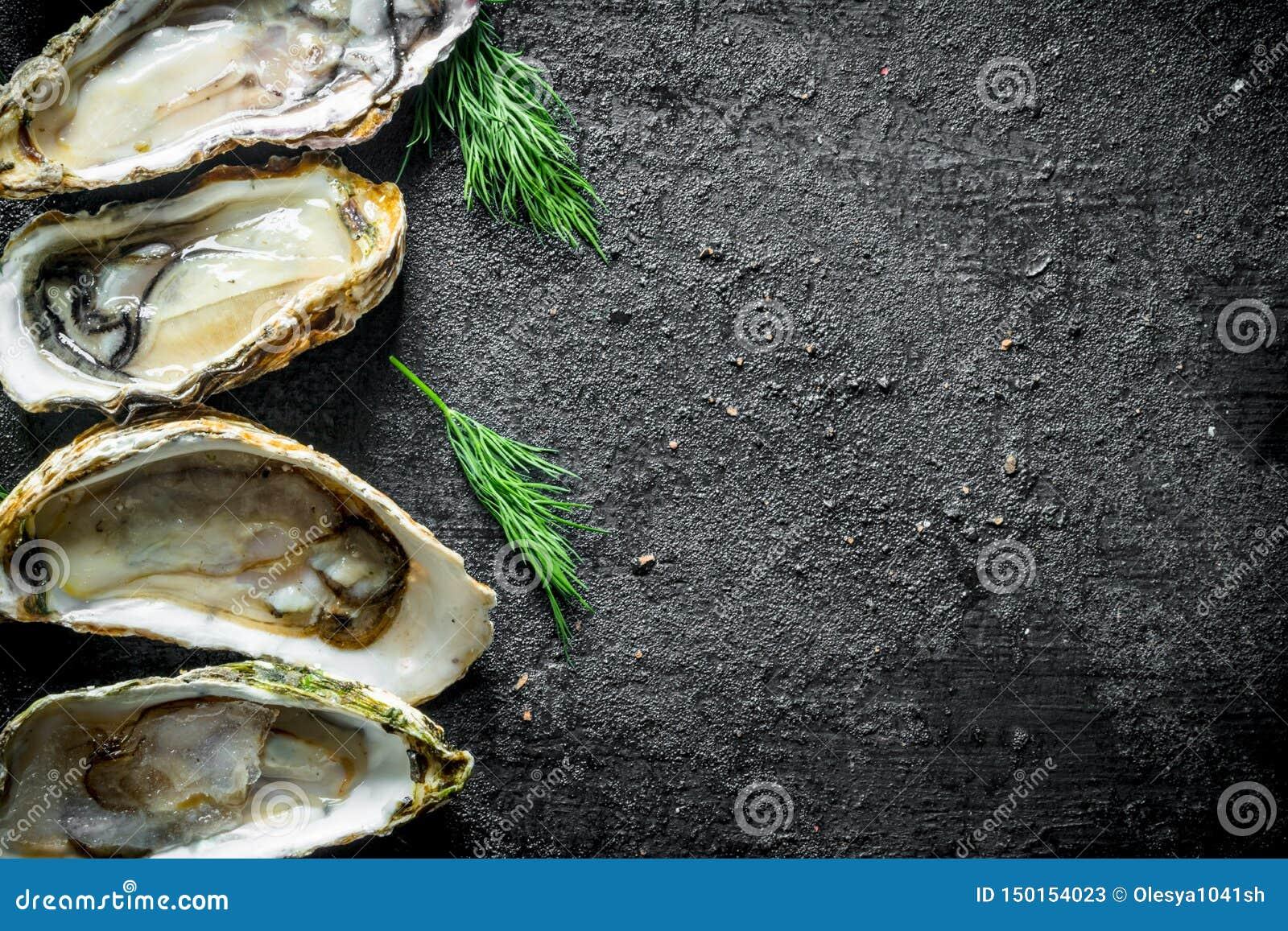 Smakelijke ruwe oesters met dille