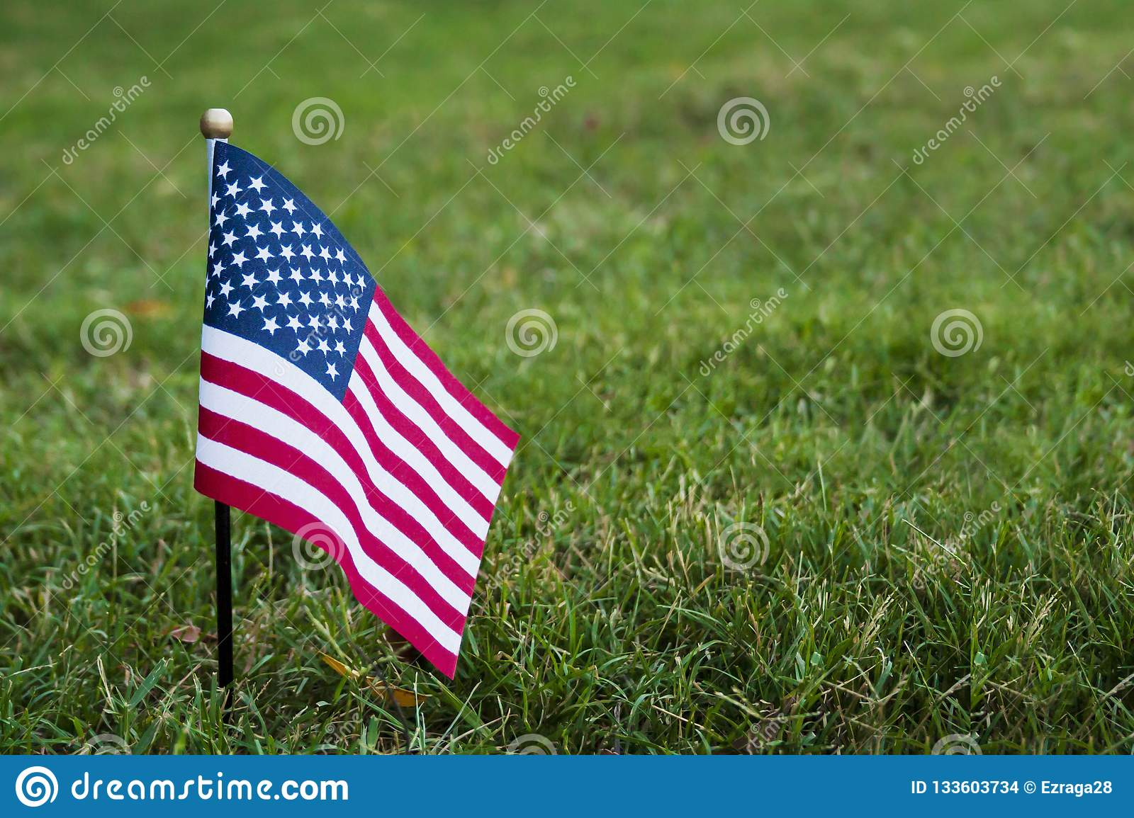 Small American flag on the grass