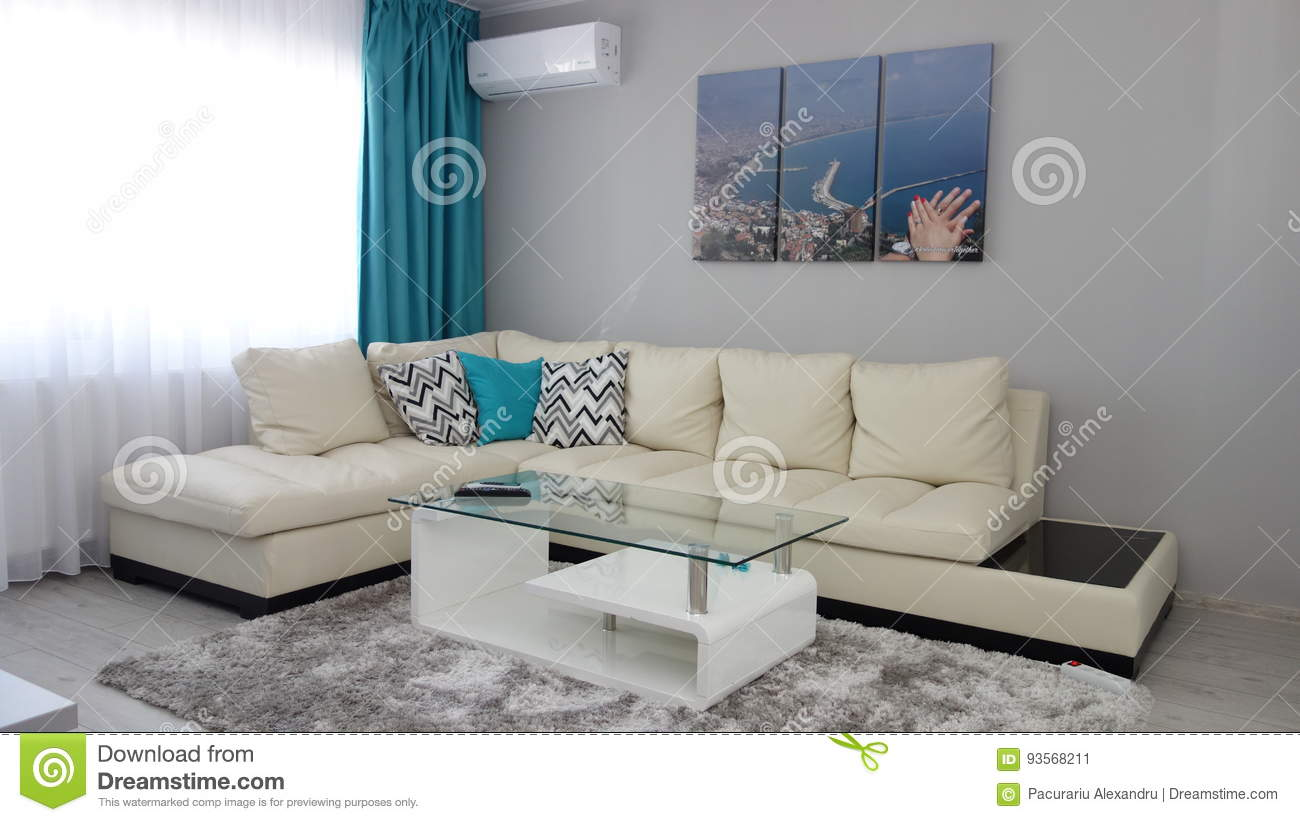 Small Apartment Living Room Design Idea Leather Couch