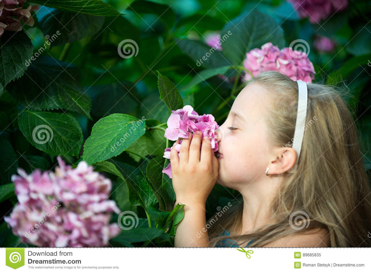 small baby girl with smiling face among pink hydrangea blossom stock