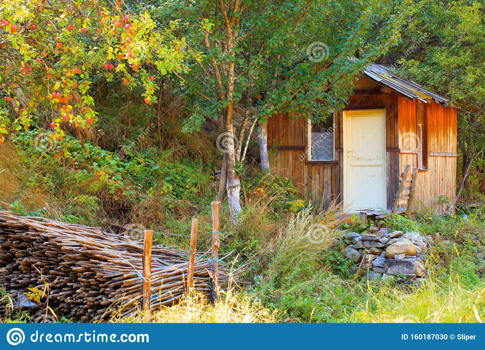 Small Barn Or House In Colorfull Autumn Forest Stock Photo