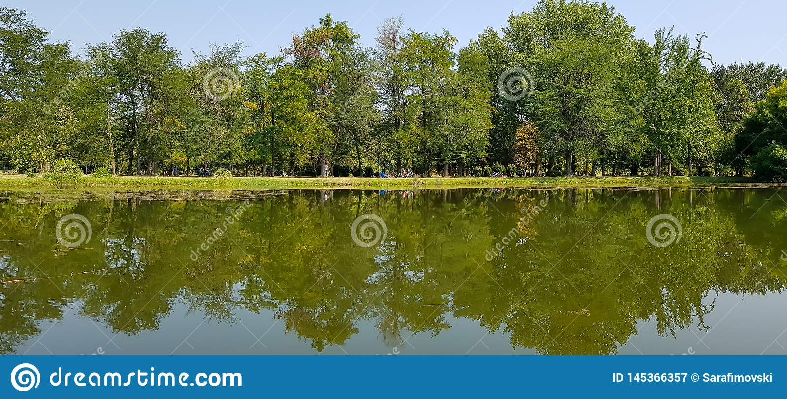 Small beautiful panorama lake with reflection of nearby green big trees.