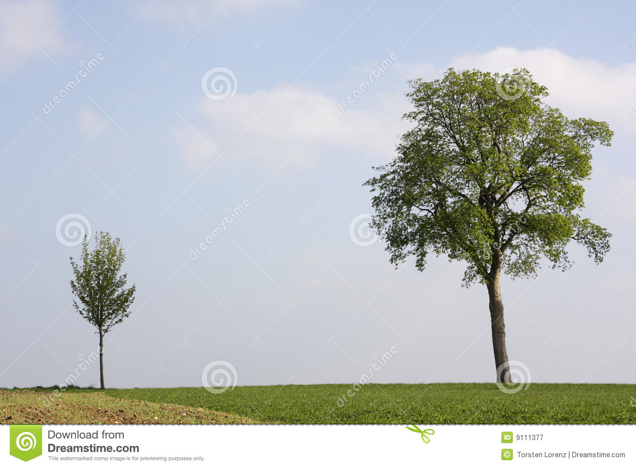 small and big tree royalty free stock photography image springtime clip art free images springtime clip art free images