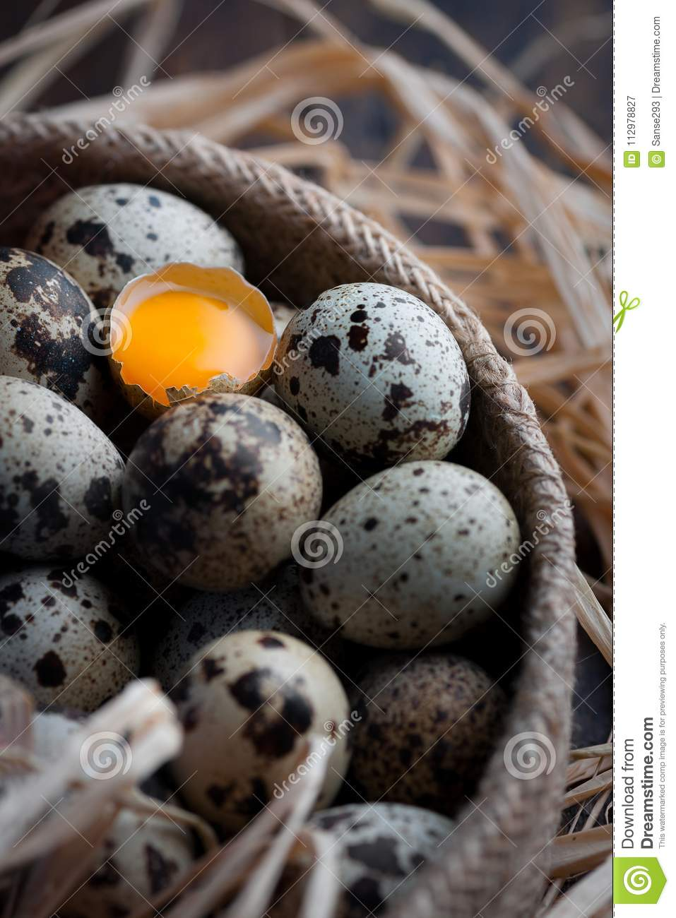 Bird eggs with one of them fracture and view the yolk
