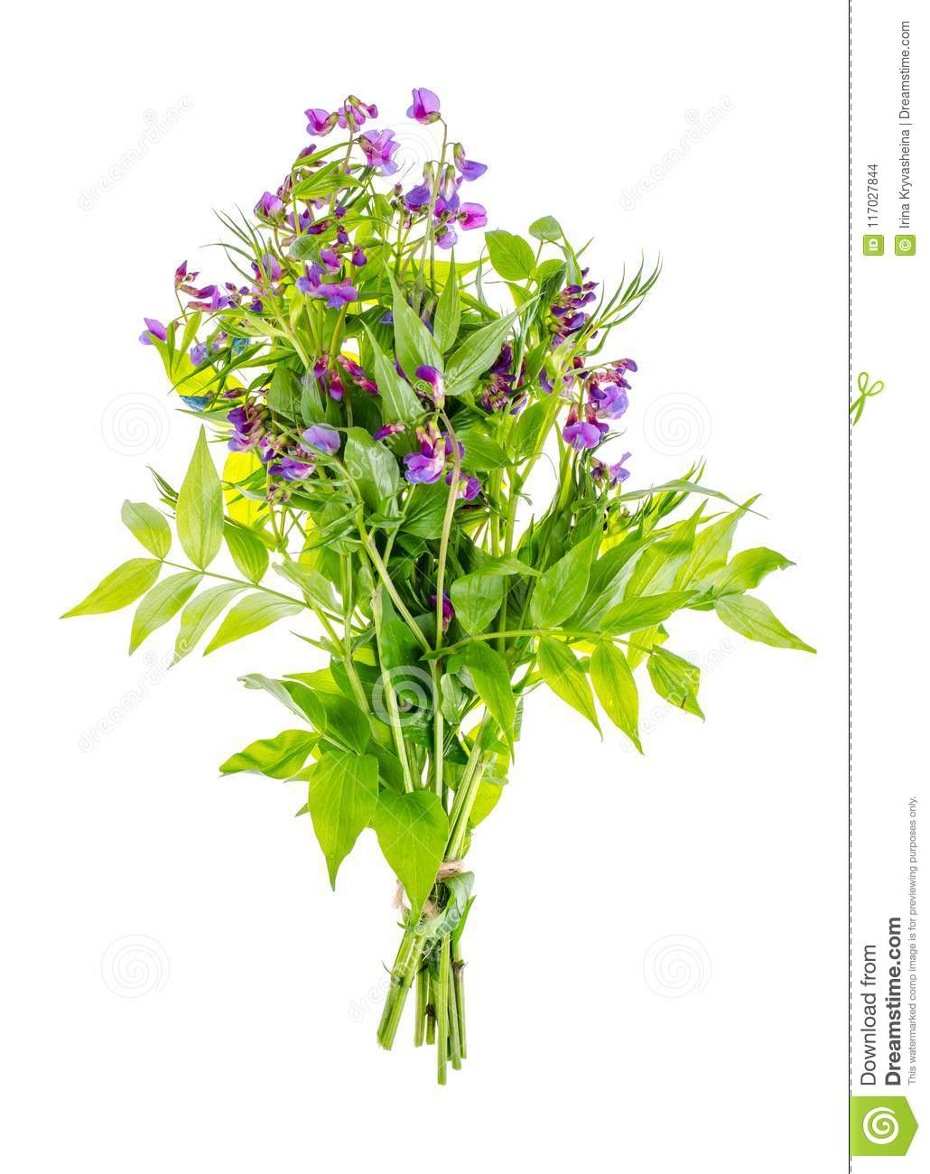 small bouquet of flowers with blue petals stock photo image of rh dreamstime com small bunch of flowers or a sentiment or motto small bunch of flowers tattoo
