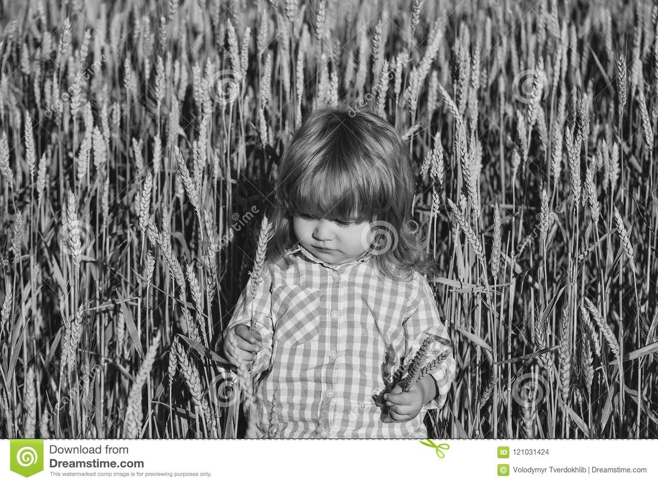 Spikelets on long hair