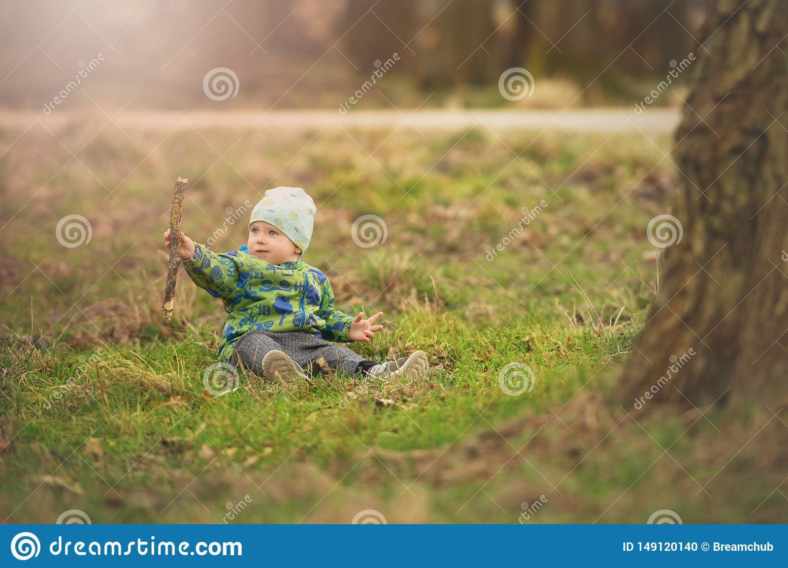 Small boy is sitting on grass and handling stick in spring park near big tree