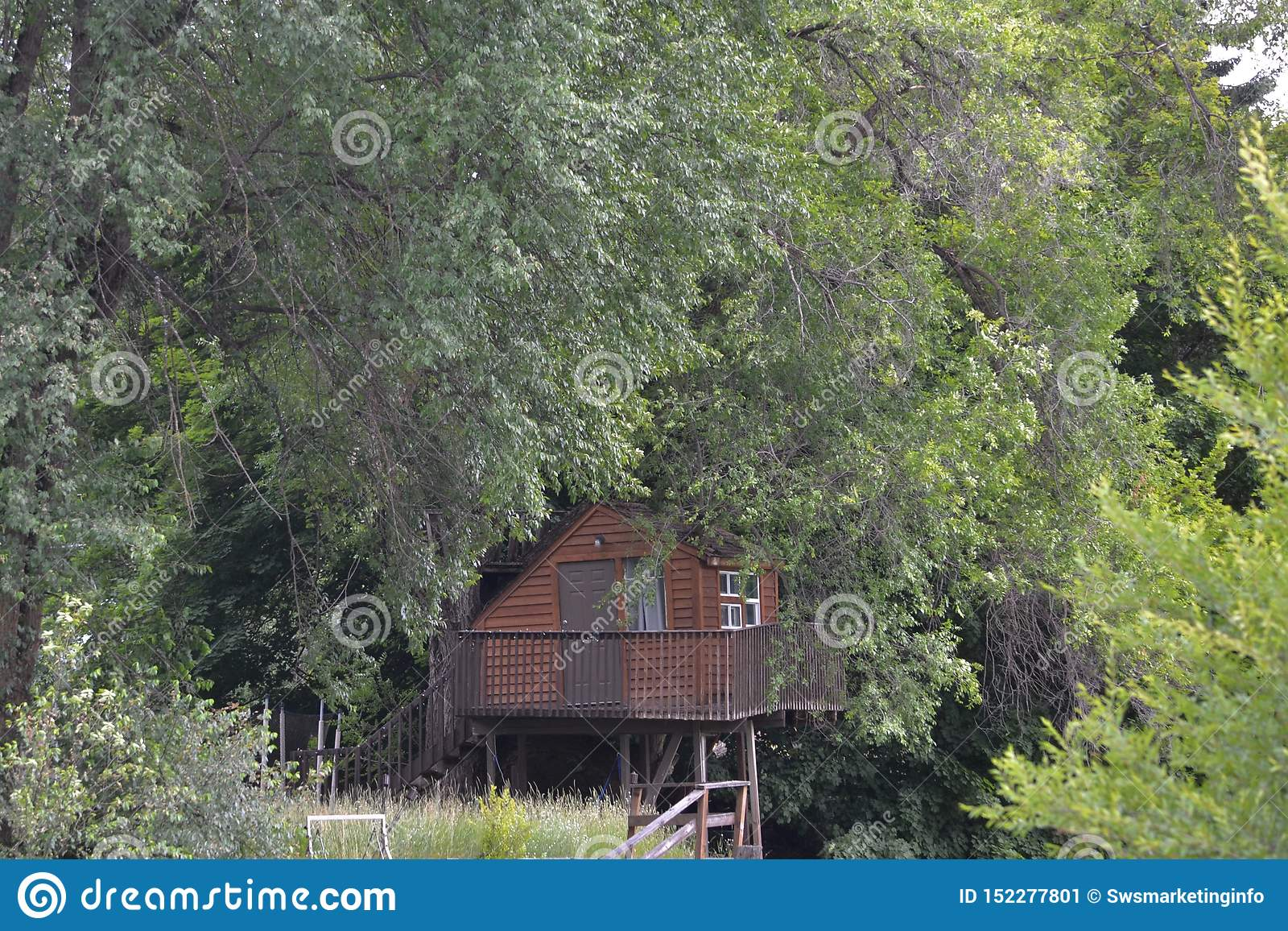 Small Cabin In The Woods