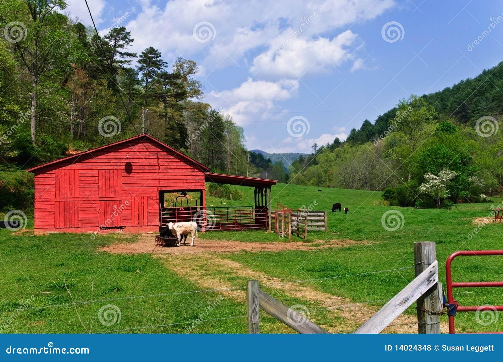 chicken coop business plan