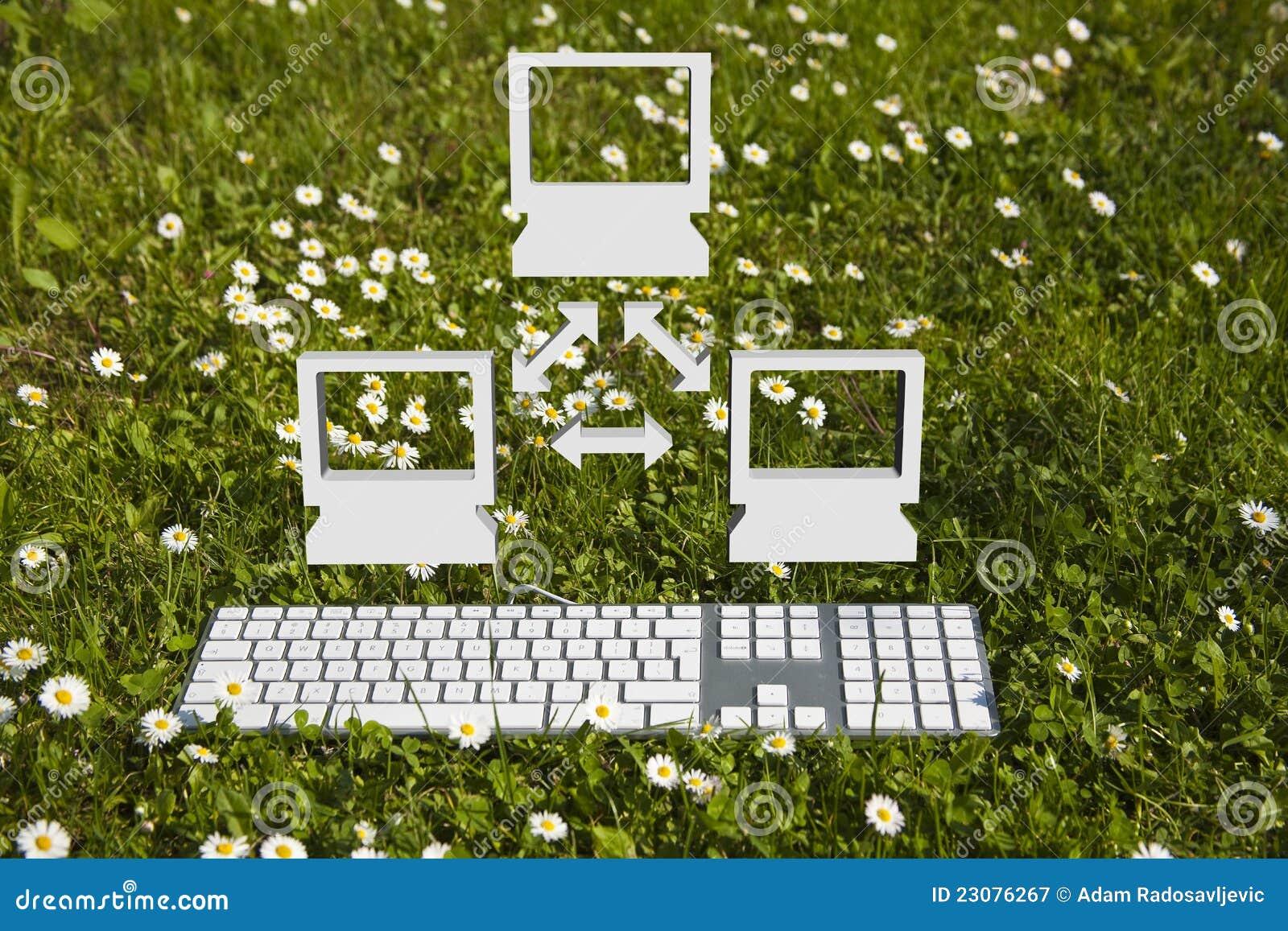 Beautiful Small Computer Network In Garden