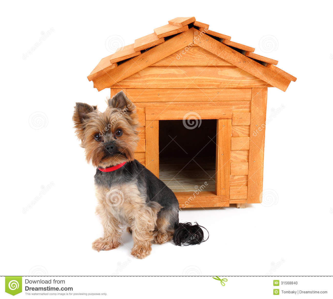 Dog House Small House Plan 2017