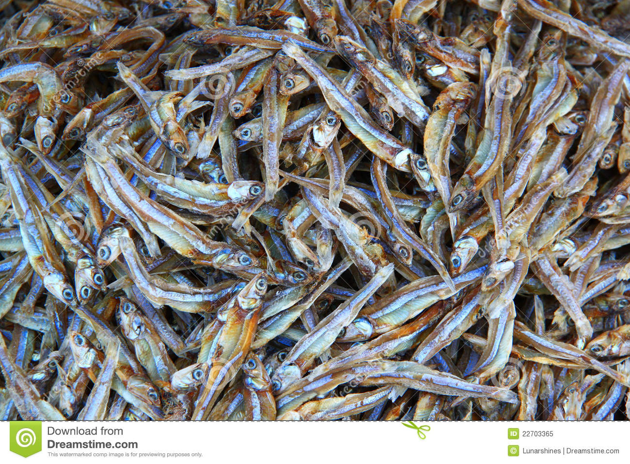 Small dry fish royalty free stock photo image 22703365 for Too cool fishing