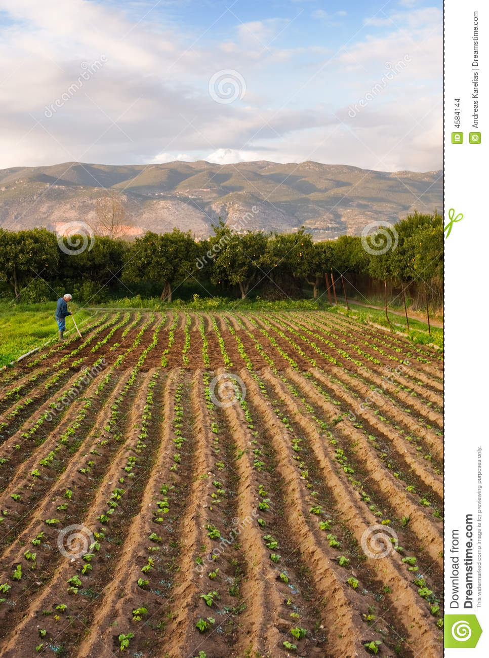 Small farm stock images image 4584144 - Small space farming image ...