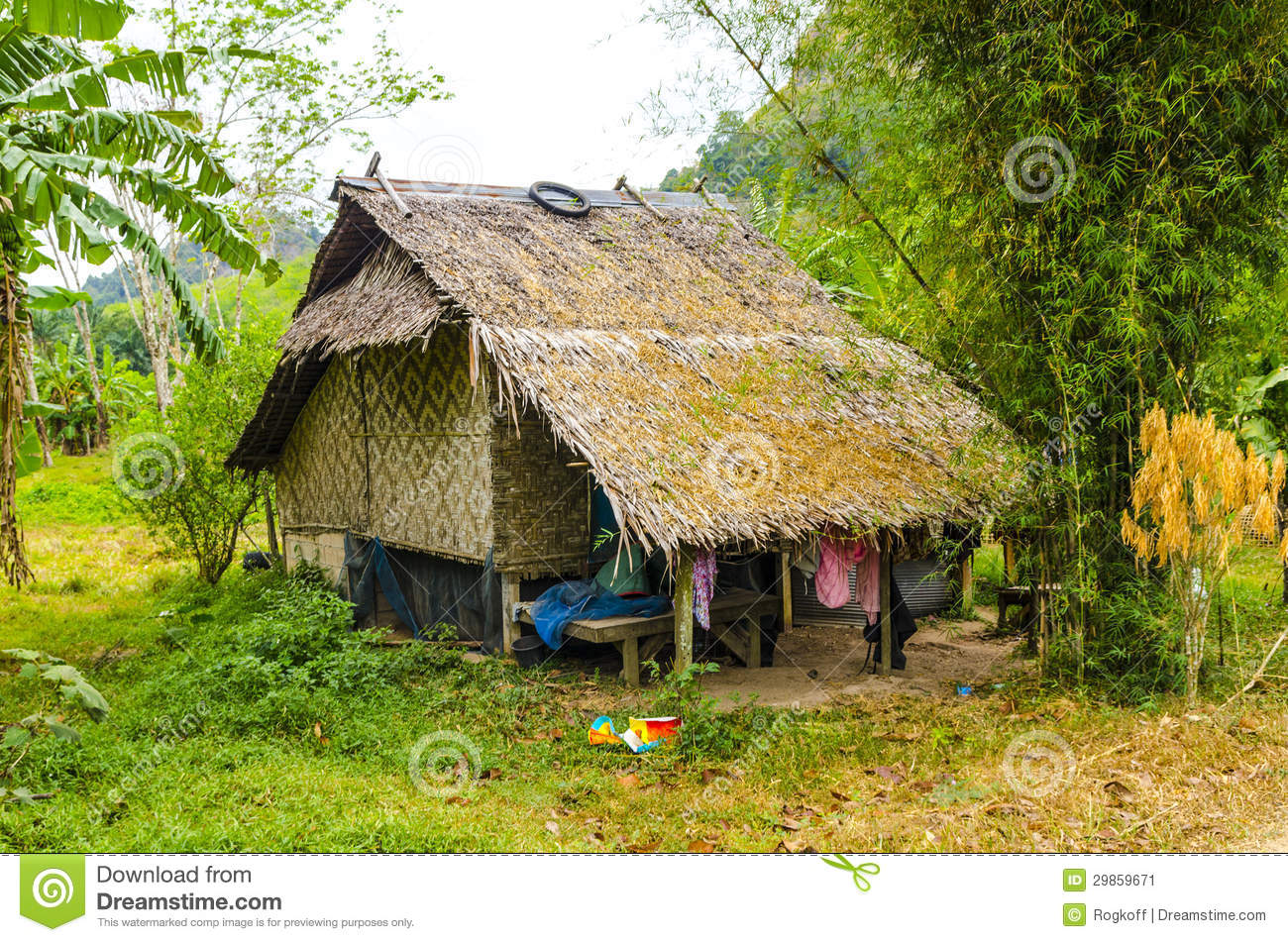 Small Farmhouse Surrounded By Jungle In The Thai Style