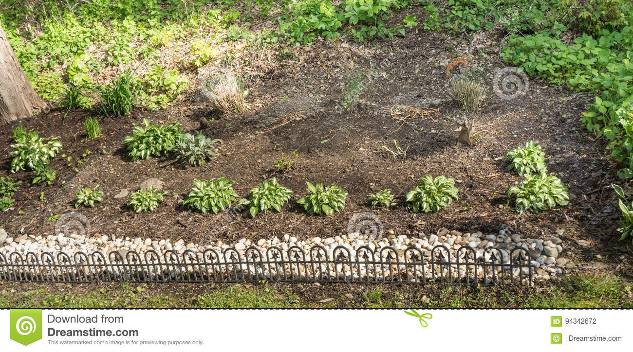 A Small Fenced Garden With Carefully Tended Plants Stock Photo