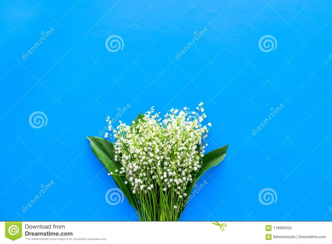 Small and fragrant spring flowers bouqet of lily of the valley download small and fragrant spring flowers bouqet of lily of the valley flowers on pastel mightylinksfo