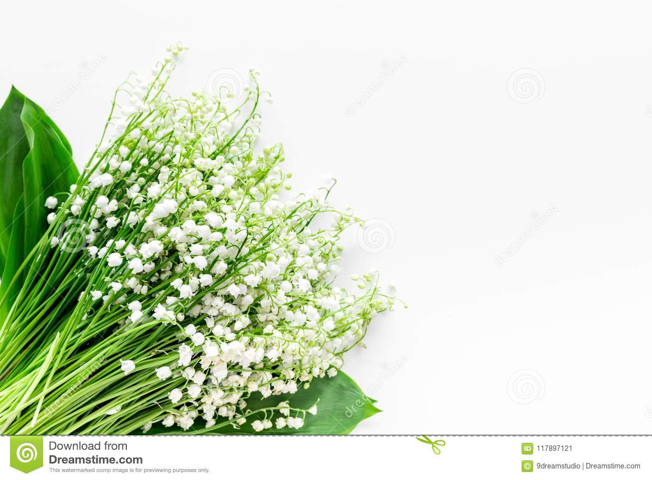 Small and fragrant spring flowers bouqet of lily of the valley small and fragrant spring flowers bouqet of lily of the valley flowers on white background izmirmasajfo