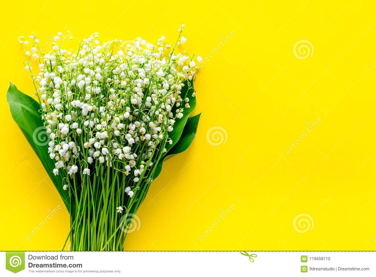Small And Fragrant Spring Flowers Bouqet Of Lily Of The Valley