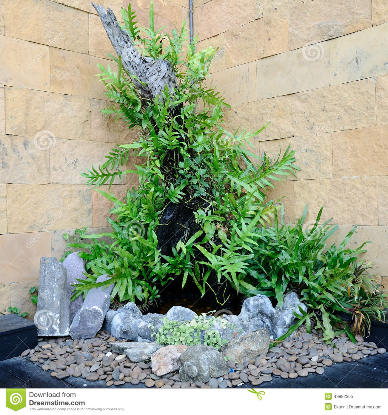 Small garden in corner of building stock image image for Jardines pequenos en esquina